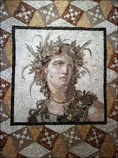 Roman Mosaics  (more detailed photo of the pattern)