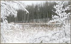 Landscape Winter Snow #popular #pinterest #landscapes
