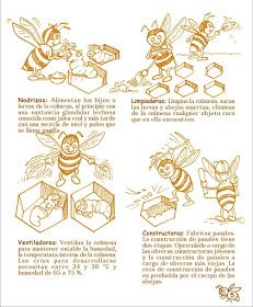 La Familia de la Apicultura - The Beekeeping of Family: Manual Apícola Ilustrado - Beekeeping Illustrated Manual. Learn Faster, Family Traditions, Queen Bees, Bee Keeping, Illustration, Bee Hives, Golden Honey, Royal Jelly, Honey Bees