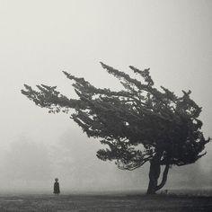 Hayat kısa, hesap yakın, edepsizliği bırakın! Abdurrahim Karakoç