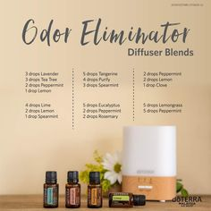 Essential Oil Spray, Essential Oils Guide, Essential Oils Cleaning, Essential Oil Diffuser Blends, Doterra Essential Oils, Doterra Diffuser, Essential Oil Combinations, Diffuser Recipes, Cleanse
