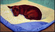 Hockney's Dashound