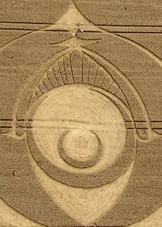 Crop Circle at Woodborough Hill, Nr Alton Barnes, Wiltshire. Reported 20th August 2012.