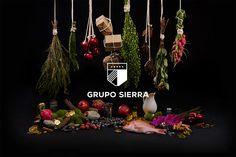 Grupo Sierra by MIUNA - Logo