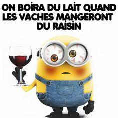 Les minions … Plus Minion Humour, Funny Minion, Citation Minion, Funny Phrases, Minions Quotes, Fitness Quotes, Funny Jokes, Like4like, Lol