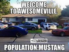 """Welcome to """"AwesomeVille"""" Mustang heaven :)"""