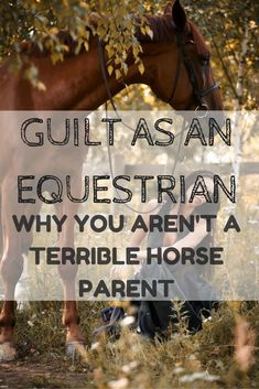 Every rider will experience guilt at some point in their riding career... here's why feeling guilty doesn't mean you a terrible horse parent!