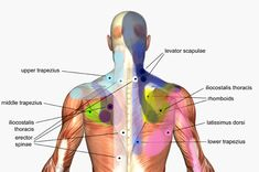 Stress Management | Back Ache | Shoulder Ache | Trigger Point Therapy really works! #benefitnessdaytona #triggerpointtherapy