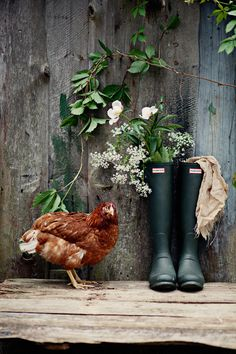 Wellies, flowers & a chicken...what more could you ever want!  Order an oil painting of your pet now at www.petsinportrait.com
