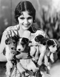 Dorothy Lanis, actress with Fox Terrier puppies Fox Terriers, Chien Fox Terrier, Wirehaired Fox Terrier, Wire Fox Terrier, Terrier Puppies, Airedale Terrier, Puppies Puppies, Jack Russell Terriers, Dog Photos