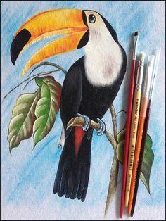 Inspirações da Semana - Blog da Pintura Condor