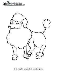 Poodle Coloring Page   A Free Animal Coloring Printable