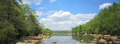 The view from Blueberry Swamp on the Yellow Trail at Camp #Yawgoog.  Image by David R. Brierley.