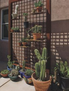 Cool rebar plant wall/stand.....(from Phoenix Home & Garden Magazine March 2009).