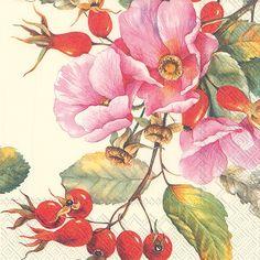 IHR Wild Rose Floral Printed 3-Ply Paper Cocktail Napkins Wholesale C702400