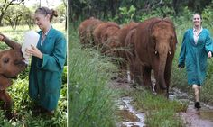 The girl who has dedicated her life to saving orphans of the bush.     Rachael Murton cares for baby elephants left without their mums by poachers killing indiscriminately. The Chelmsford-born biology graduate carries out dangerous rescue operations in the African bush. She manages the Lilayi Elephant Nursery, the only orphanage of its kind in southern Africa.