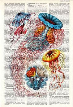 Joshua Howe: Upcycled Dictionary Book Art Prints