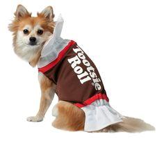 #Halloween #Pet #Costumes
