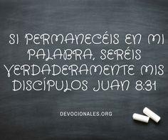 Juan 8:31 Si Permanecéis en mi Palabra, Seréis Verdaderamente Mis Discípulos