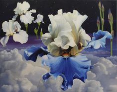 I paint large floral paintings of Peonies, Iris and Roses. Purple Peonies, Purple Iris, White Peonies, Yellow Roses, White Roses, Pink Purple, Graham Thomas Rose, White Iris, Art Society