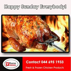 """Karoo Kuikens wishes all our friends and fans a fabulous Sunday! Don't be """"Chicken"""" to have a braai and enjoy the day with your family. Frozen Chicken, Fort Lauderdale, Chicken Recipes, Turkey, Fresh, Meat, Food, Salvador, Notebooks"""