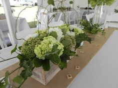 Gorgeous green and white hydrangea with curly willow and ivy in wooden boxes
