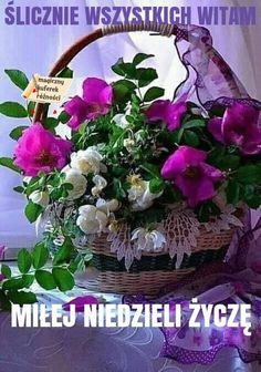 Online Photo Editor - Edit your photos, pictures and images online for free Amazing Flowers, Beautiful Flowers, Photo Bouquet, Garden Park, Special Flowers, Hanging Flowers, Bunch Of Flowers, Purple Aesthetic, Flower Basket