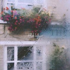 Rain is grace; rain is the sky descending to the earth; without rain, there would be no life.Just a 20 pluviophile loving life Check out my personal. Scribble, Writing Inspiration, Rainy Days, Rainy Sunday, Pretty Pictures, Amazing Photos, Flower Pictures, In This Moment, Windows