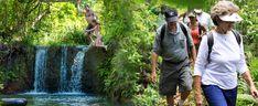 Princeville Ranch Adventures - Jungle Valley Adventure - Hawaii Discount
