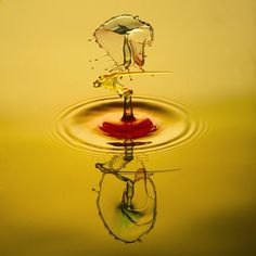 the art of waterdrops