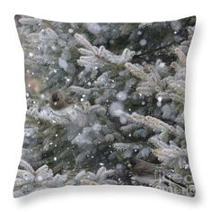 Colorado Blue Spruce Haven throw pillow by Sandra Huston