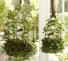 Bird cage hanging flower baskets hung with a swatch of burlap?  Yes, please! This website has numerous ideas for decorating with bird cages!