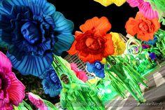 Carnaval de Rio Rio Carnival Uniao da Ilha 2012 brasil brazil rio de janeiro