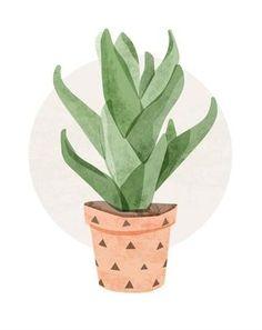 'Aloe Vera Cactus' by Color Bee Creative