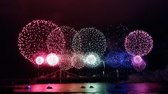 Checking out festivals is one of my favourite things to do. When I came to South Korea, I was surprised how many festivals this country has. And there's pretty much a festival for everything: flowers, fish, fireworks… you name it! With the help of blogger