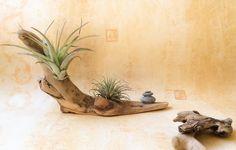 Objet décoratif en bois flotté par l'Atelier de Corinne : Accessoires de maison par atelier-de-corinne