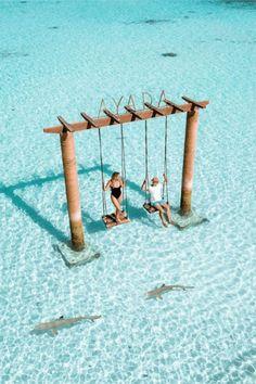 Übernachten Sie im Ayada Maldives Resort, Malediven - Maldives - Flitterwochen Logo Voyage, Voyage Usa, Voyage Europe, Maldives Voyage, Maldives Resort, The Maldives, Maldives Hotels, Visit Maldives, Maldives Honeymoon