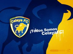 ¡Todos Somos CelayaFC! • #LigraficaMX