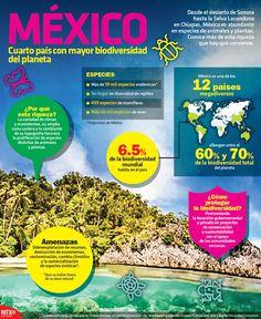 #UnDato | México es el cuarto país con mayor biodiversidad del planeta.  #Infographic #spanishinfographic