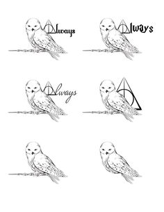 A tattoo design for a friend, based on Hedwig from Harry Potter More