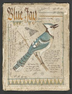 "Ken Scott American Frontier Artist Blue Jay Ink, Watercolor & graphite on the inside of an antiqued book cover. Size:Approx. 8.5 x 11"" SOLD"