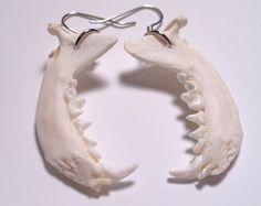 Jaw Bone Earrings