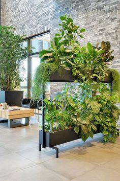 Verdeel een kantoor of ruimte op een gezonde manier dankzij GRØNN's verplaatsbare roomdivider. gevuld met levende groene beplanting dat veel gezonde luchtzuiverende voordelen met zich meebrengt. Een mooie oplossing in tijden van de coronacrisis. #grønn #coronaproofkantoor #groeneplanten #coronaoplossingen #roomdivider #groeneroomdivider #werkafscheiding #coronaproof #plantenwand #coronacrisis #duurzaam #stalendesign #gezondewerkplek #groenkantoor #covid19 #gezondkantoor #groenewerkplek Interior Garden, Interior Plants, Office Interior Design, Office Interiors, Plant Design, Garden Design, Indoor Garden, Indoor Plants, Pot Jardin