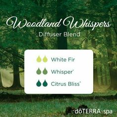 Woodland Whispers Diffuser Blend 2 drops White Fir 2 drops Whisper (Blend For Women) 2 drops Citrus Bliss