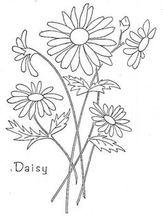 'Daisy', and I don't mean Duke, embroidery pattern.