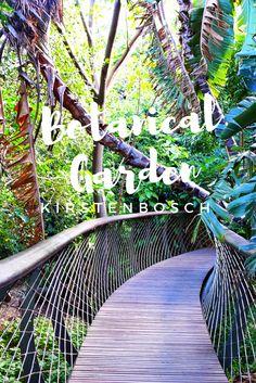 Ein absoluter Herzensort in Kapstadt ist für mich der Botanische Garten Kirstenbosch.
