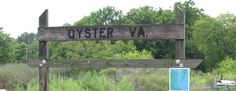 Broadwater Oyster Company