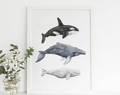 Humpbacks, belugas and orcas - this print has them all. This watercolor whale art print brings the ocean to any home, office or nursery. Each print is carefully made in California with the highest qua Ocean Themed Nursery, Whale Nursery, Baby Boy Nursery Themes, Nursery Room, Boy Room, Nursery Ideas, Kids Room, Boys Nautical Bedroom, Nautical Nursery Decor