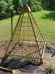 plans for a cucumber trellis . plans for a cucumber trellis Garden Trellis, Garden Beds, Bamboo Trellis, Bean Trellis, Strawberry Planters Diy, Strawberries Garden, Tomato Planter, Cucumber Trellis, Garden Structures