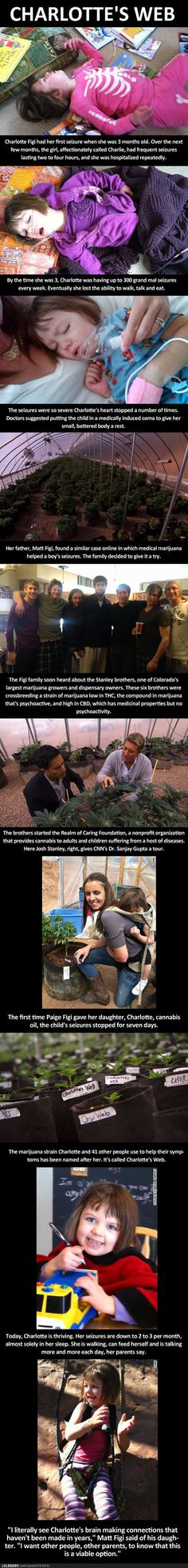 This is AMAZING, regardless of how you feel about marijuana it has saved this little girl!